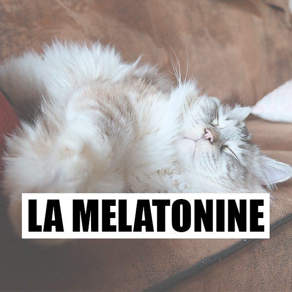 La mélatonine, remède miracle?